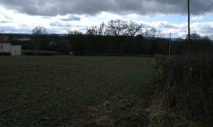 Terrains à Igornay