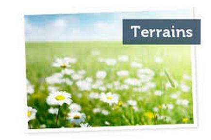 TERRAIN ALLERIOT – 71380